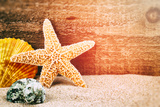 Sea Star and Shells Photographic Print by  paulgrecaud