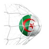 Algerian Soccer Ball in a Net Premium Giclee Print by  zentilia