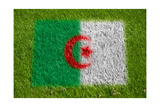 Flag of Algeria on Grass Poster by  raphtong