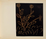 LC - Plante aux toritos Impressões colecionáveis por Pablo Picasso