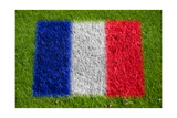 Flag of France on Grass Plakater av  raphtong