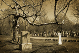Cemetery Photographic Print by pink candy