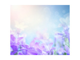 Campanula Floral Background Prints by  mythja