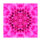 Pink Concentric Flower Center: Mandala Kaleidoscopic Design Posters by  tr3gi