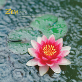 Zen - 2015 Calendar Calendars