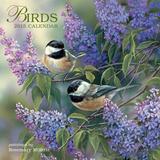 Birds - 2015 Calendar Calendars