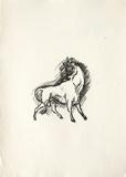 La Princesse de Babylone 45 (Suite NB) Reproduction pour collectionneur par Kees van Dongen