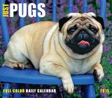 Just Pugs - 2015 Box Calendar Calendars