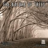 The Nature of Trees - 2015 Calendar Calendars