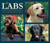Just Labs - 2015 Box Calendar Calendars