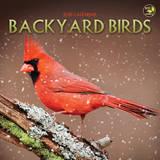 Backyard Birds - 2015 Mini Calendar Calendars