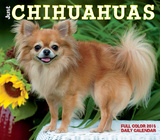 Just Chihuahuas - 2015 Box Calendar Calendars