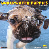 Underwater Puppies - 2015 Mini Calendar Calendars
