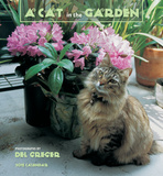 A Cat In The Garden - 2015 Calendar Calendars