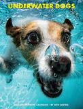 Underwater Dogs - 2015 Engagement Calendar Calendars
