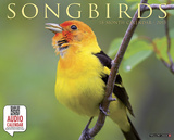 Songbirds - 2015 Calendar Calendars