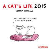 A Cat's Life - 2015 Calendar Calendars