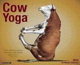 Cow Yoga - 2015 Calendar Calendars