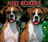 Just Boxers - 2015 Box Calendar Calendars