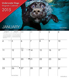 Underwater Dogs - 2015 Magnetic Calendar Calendars