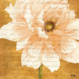 Beautiful Cream Peonies Script II Prints by Patricia Pinto