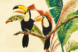Tropical Toucans I Posters by Linda Baliko