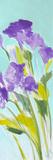 Violet Bella II Poster by Lanie Loreth