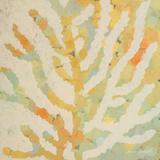 Coral Vision I Prints by Lanie Loreth