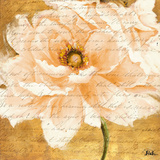 Beautiful Cream Peonies Script I Posters by Patricia Pinto