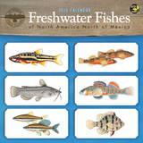Freshwater Fishes - 2015 Calendar Calendars