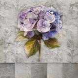 Hydrangeas & Stripes I Print by Patricia Pinto