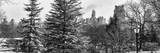Panoramic View of Central Park with a Squirrel running around on the Snow Photographic Print by Philippe Hugonnard