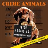 Crime Lab Pets - 2015 Premium Calendar Calendriers