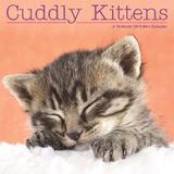 Cuddly Kittens - 2015 Mini Calendar Calendars
