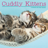 Cuddly Kittens - 2015 Calendar Calendars