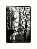 Eiffel Tower View of Winter Trocadero - Paris, France Photographic Print by Philippe Hugonnard