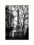 Eiffel Tower View of Winter Trocadero - Paris, France Lámina fotográfica por Philippe Hugonnard