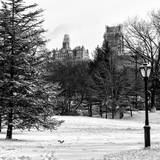 View of Central Park with a Squirrel running around on the Snow Photographic Print by Philippe Hugonnard