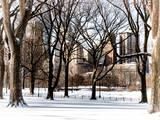 Winter Snow in Central Park View Photographic Print by Philippe Hugonnard