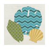 Shell Patterns I Prints by Erica J. Vess
