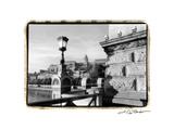 View of the Royal Palace, Budapest Photographic Print by Laura Denardo