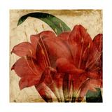 Vibrant Floral VIII Prints by  Vision Studio
