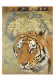 Tiger Africa Posters by Jace Grey