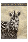 Zebra Africa 2 Prints by Jace Grey