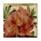 Vibrant Floral VII Prints by  Vision Studio