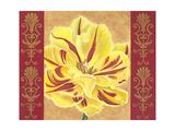 Tulip Power II Premium Giclee Print by Carolee Vitaletti
