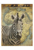 Zebra Africa Prints by Jace Grey