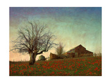 Barn on the Hill Giclée-Premiumdruck von Chris Vest
