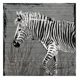 Zebra Walk Art by  OnRei