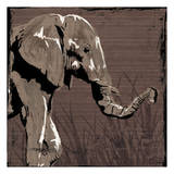 Elephant Walk Brown Prints by  OnRei